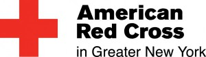 All NYC American Red Cross Webinar @ webinar