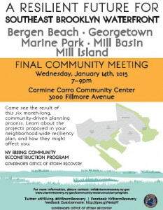 SOUTHEAST BROOKLYN WATERFRONT Final Public Meeting @ Carmine Carro Center | New York | United States