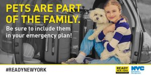 NYC Emergency Management Pet Preparedness Event @ Walt Whitman Park  | New York | United States